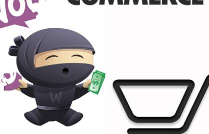 Pro e contro di WordPress per e-commerce